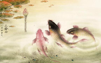 蓝健康的鱼适合什么风格的家居?中式风格的如何?