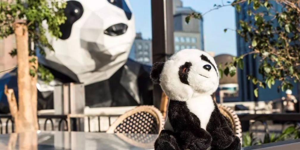 "OPERATION PANDA即将启程 | 两只熊猫宝宝的巴黎寻""梦""之旅"
