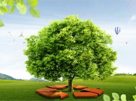 1-6月环境质量通报出炉 环境空气质量综合指数周村最差