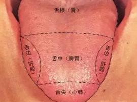是不是亚健康看舌头 好舌头具备的5种条件