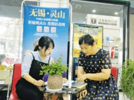 靖江各旅行社争推国庆游线路 产品丰富有特色