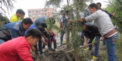 高卫华到辰时镇调研植树造林和扶贫工作