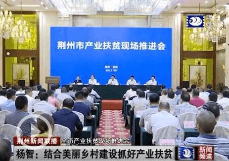 杨智:结合美丽乡村建设 抓好产业扶贫