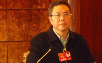 万州区长白文农:持续提升经济社会发展质量