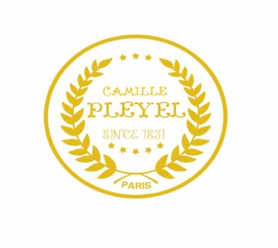 卡米尔·普莱耶尔钢琴——恩斯特集团