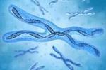 研究发现:致病基因可被选择性识别
