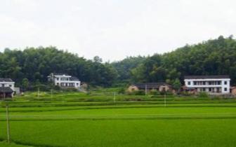 """中国农村宅基地""""三权分置""""改革将带来哪些红利?"""