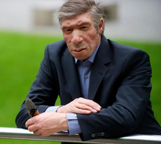尼安德特人和智人是否交配过?黑猩猩或有答案