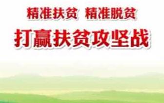 陕州区商务局: 立足新起点 致力新发展