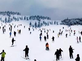 浙江第一场雪就宠幸这个小县城!户外滑雪+飘雪温泉