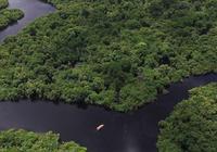 地理条件决定工具 飞艇能否成亚马逊河的开拓者?