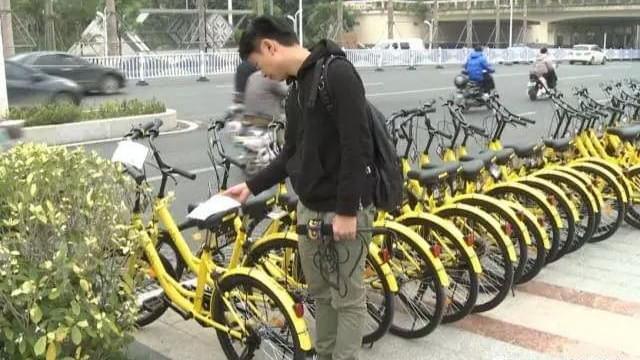 """共享单车来南宁 民族大道一夜之间铺满""""小黄车"""""""