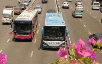 202路公交20日开通 填补齐安路北段公交线网空白