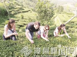 华安有机农场体验中心吸引众多中外游客