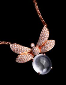 龙泽润宝蜻蜓系列:在最柔软的草原中心