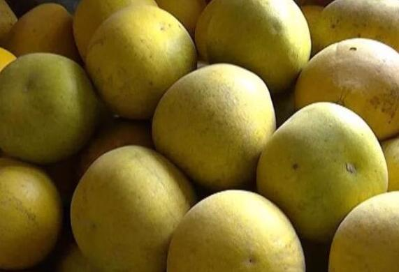 江陵一贫困户5000斤柚子急需销路,一起来帮帮他吧!