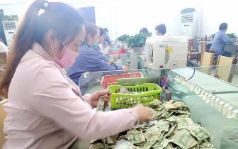 """南阳市永不停歇的公交""""女人花"""""""