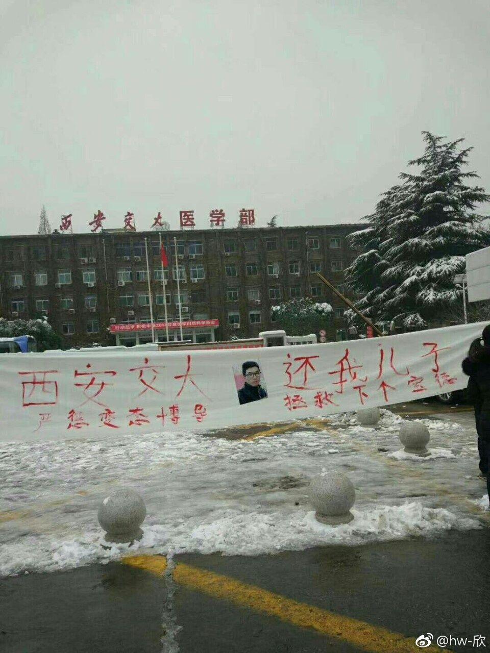谁杀死了中国博士