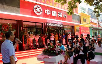 视频:中国茶叶普洱茶体验馆落户雄安新区