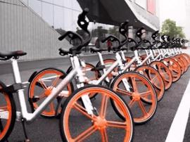 新办卡约500张 公共自行车挺抢手
