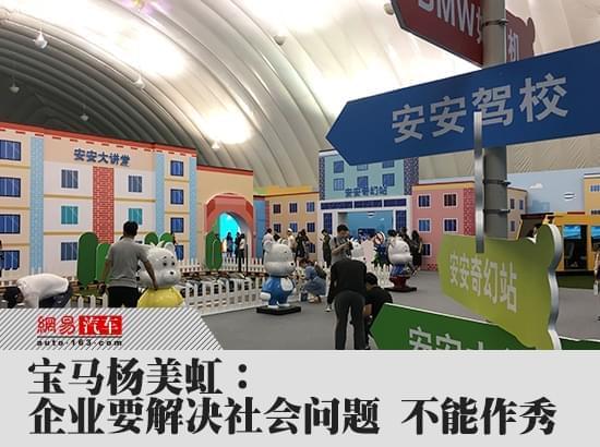 宝马杨美虹:企业要解决社会问题 不能作秀