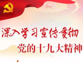 卢氏县政府办职工深入学习党的十九大精神