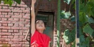 太原居民种出两米多长丝瓜 吸引民众围观
