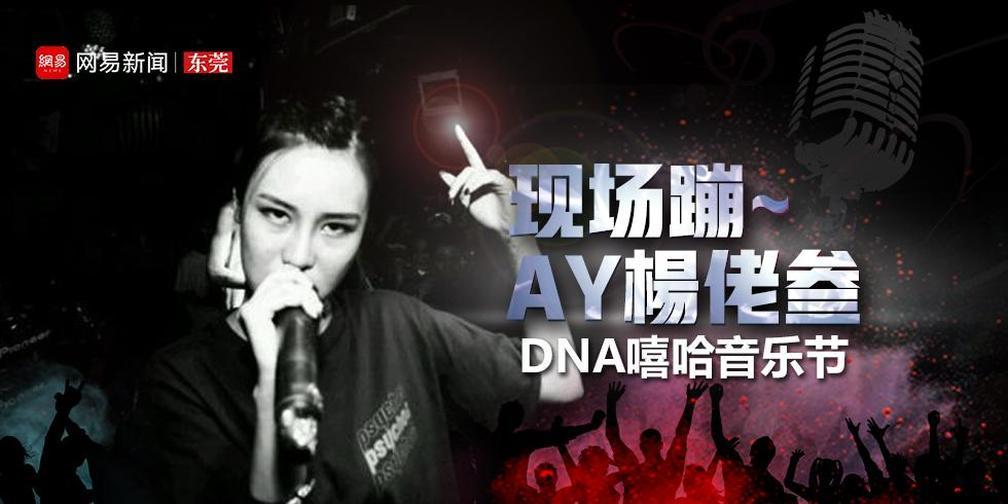 现场蹦~AY楊佬叁DNA嘻哈音乐节