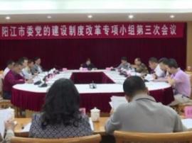 阳江市委部署新时代党的建设制度改革
