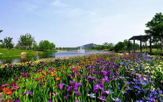 """沈阳植物园 被誉为""""森林中的世博园"""""""