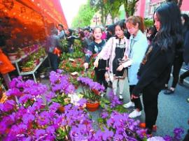 今年到广州过年游客大幅增长 爱上叹早茶逛花市