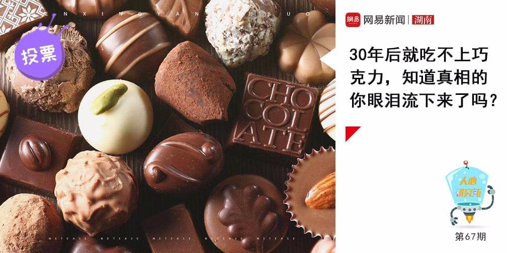 30年后就吃不上巧克力了?专家称罪魁祸首是全球变暖