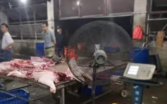 调查:闽侯2000斤未经检疫猪肉被查获