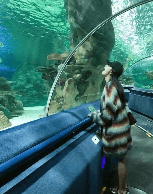 准妈妈孙怡赴水族馆游玩 挺大肚四肢仍纤细