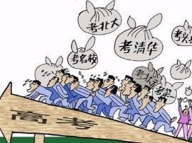 广东高考报名1日启动!这些注意事项不得不看