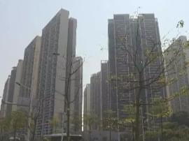 """深圳新房价格""""十三连跌"""" 租房价格有什么变化?"""