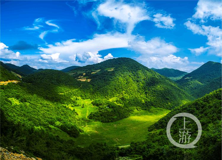 巫山红椿:年均气温10.6℃ 夏日绝佳避暑地