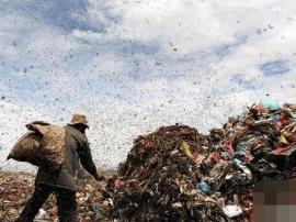 在垃圾场生活的柬埔寨女孩 为脱贫游走城市边缘