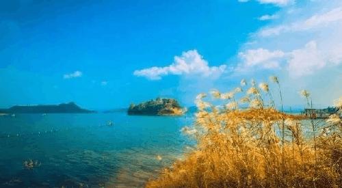 除了山 重庆竟私藏了这么多绝色小岛