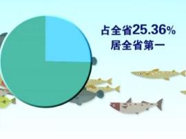 """喜讯!阳江通过""""中国南海渔都""""复审"""