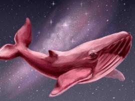 运城教育局发紧急通知  全面防范蓝鲸死亡游戏
