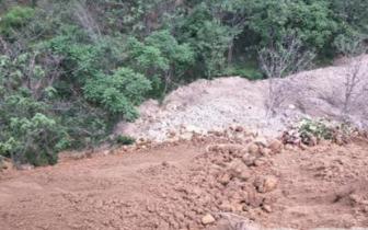 邙岭生态林区被倒四五百车渣土 树木被埋