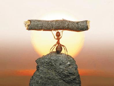 蚂蚁金服败走社交 或收缩自营金融业务