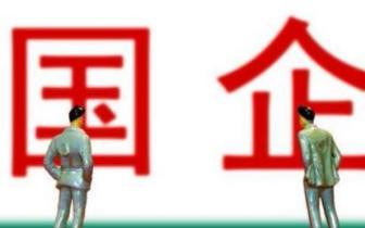 """肖亚庆谈国企民企关系:""""国进民退""""不符合实际"""