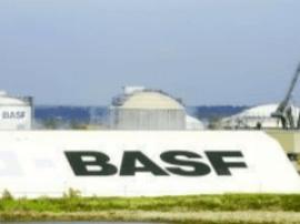 德国化工巨头巴斯夫并购拜耳种子和除草剂业务