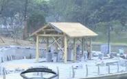 凤凰河景观提升绿化工程下月完工