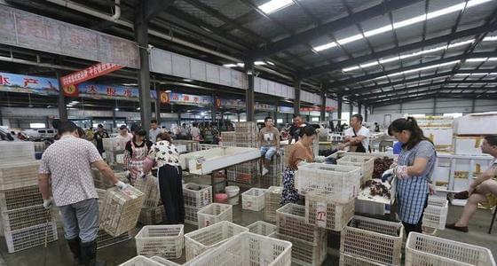 中国最大小龙虾市场:商贩月赚百万
