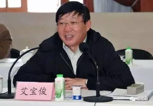 上海首虎艾宝俊获刑17年 被曝落马前大醉