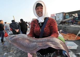 青岛渔村海鲜抢手 近一米长舌头鱼售150元