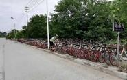 共享单车霸占人行道 交警蜀黍:不得行